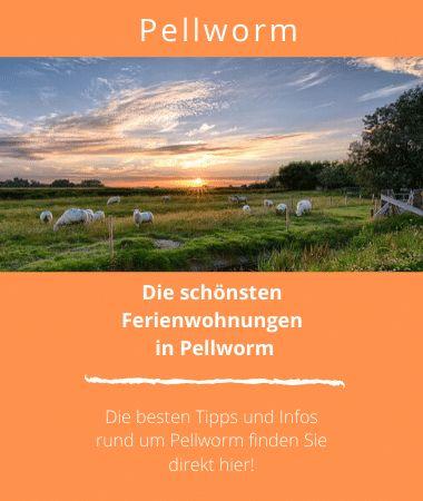 Ferienwohnungen in Pellworm